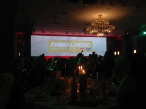 Animla Hero Awards 2017 stage IMG_5418 (002)