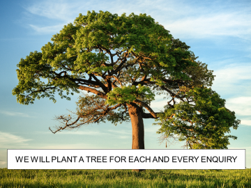 Plant a tree offer