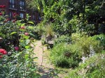 phoenix gardens london