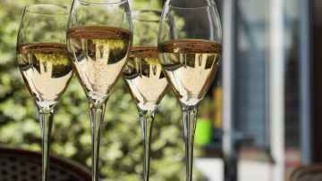 Prosecco day, drinks reception venues, conference venues